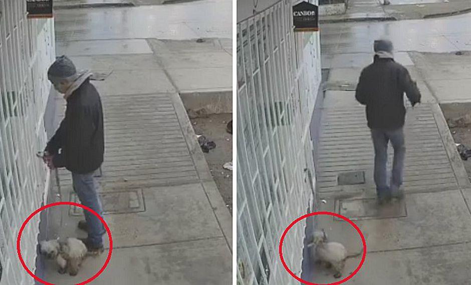 Hombre abandona a su perro en la puerta de una veterinaria | VIDEO
