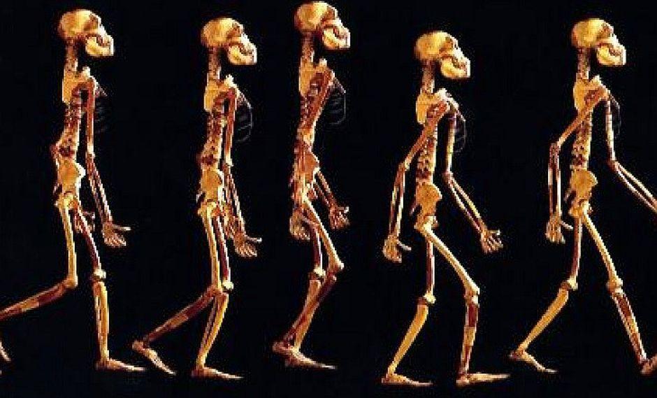 La inteligencia artificial confirma que existió otra especie de homínidos