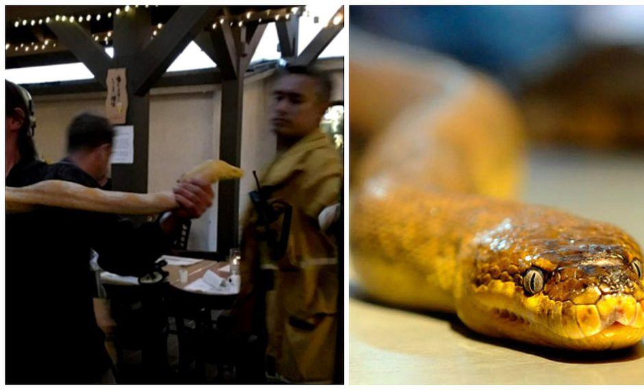 Cliente se enfada y suelta una serpiente gigante en restaurante